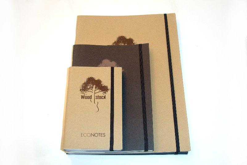 woodstock econotes 1 800x533